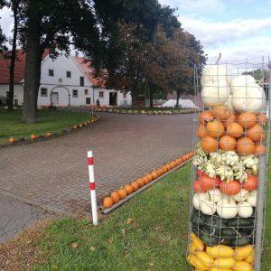 Kürbishof Rheine